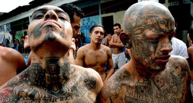 10 Most Dangerous Gangs on Earth   KickassFacts.com