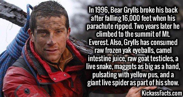1834 Bear Grylls