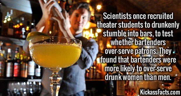 1984 Bartender Study