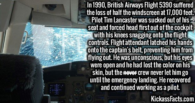In 1990, British Airways Flight 5390 suffered the loss of half the windscreen at 17,000 feet. Pilot Tim Lancaster was sucked out of his seat and forced head first out of the cockpit with his knees snagging onto the flight controls. Flight attendant latched his hands onto the captain's belt, preventing him from flying out. He was unconscious, but his eyes were open and he had lost the color on his skin, but the crew never let him go until the emergency landing. He recovered and continued working as a pilot.