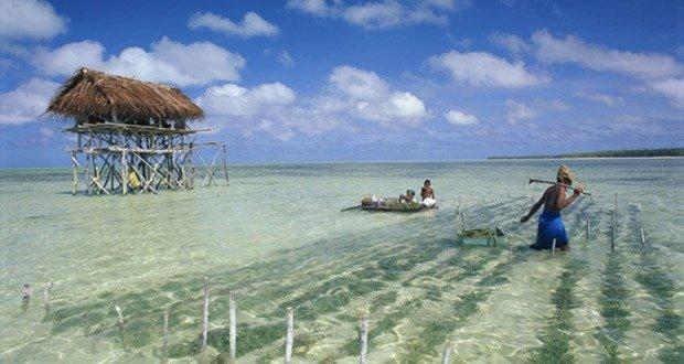 02 Kiribati