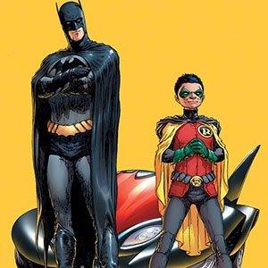 05 Robin