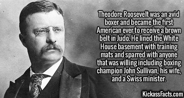 2062 Teddy Roosevelt-Theodore Roosevelt was an avid boxer and became the first American ever to receive a brown belt in Judo. He lined the White House basement with training mats and sparred with anyone that was willing including boxing champion John Sullivan, his wife, and a Swiss minister.