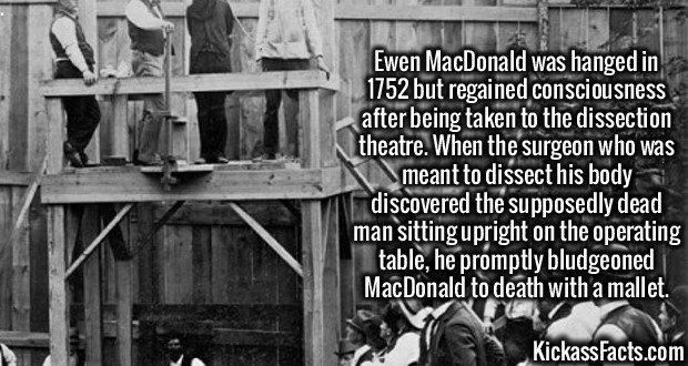 2082 Ewen MacDonald-Ewen MacDonald was hanged in 1752 but regained consciousness after being taken to the dissection theatre. When the surgeon who was meant to dissect his body discovered the supposedly dead man sitting upright on the operating table, he promptly bludgeoned MacDonald to death with a mallet.