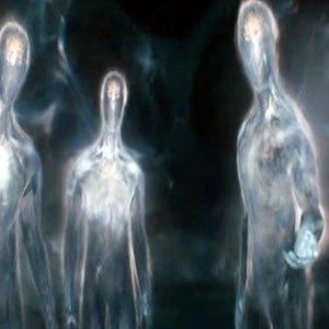 Higher Dimensional Beings