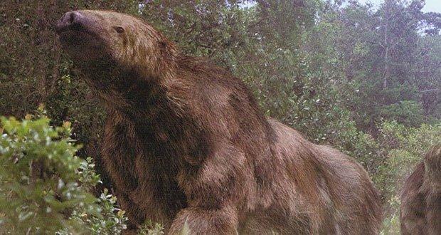 09. Megatherium