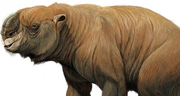 09 Diprotodon