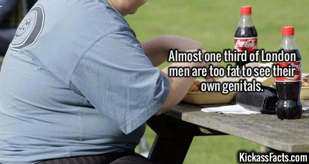 2126 London Obesity-Almost one third of London men are too fat to see their own genitals.