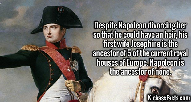 2152 Napoleon-Despite Napoleon divorcing her so he could have an heir, his first wife Josephine is the ancestor of 5 of the current royal houses of Europe. Napoleon is the ancestor of none.
