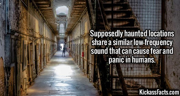 2159 Infrasounic Frequency-Supposedly haunted locations share a similar low-frequency sound that can cause fear and panic in humans.