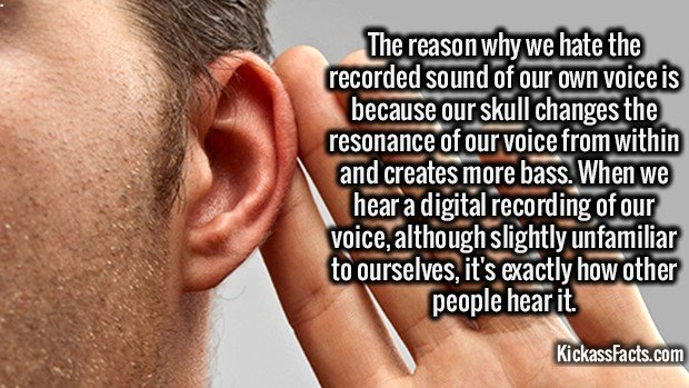 2213 Listening to Own Voice-The reason why we hate the recorded sound of our voice is because our skull changes the resonance of our voice from within and creates more bass. When we hear a digital recording of our voice, although slightly unfamiliar to ourselves, it's exactly how other people hear it.