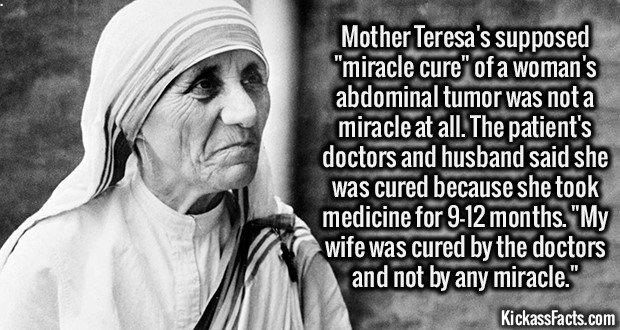 2218 Mother Teresa-Mother Teresa's supposed