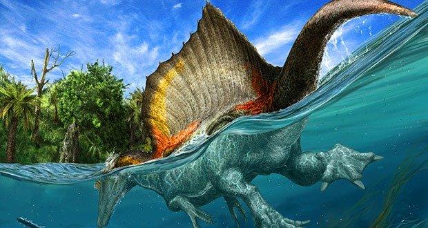 07 Largest Terrestrial Carnivore