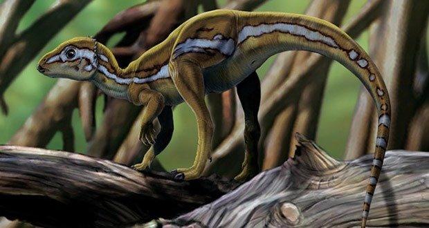 09 Longest Dinosaur Name