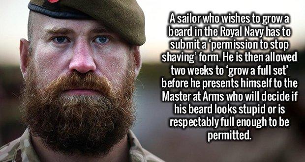 2239 Royal Navy Beard