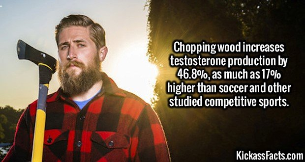 2594 Chopping wood-Chopping wood increases testosterone production by 46.8%, as much as 17% higher than soccer and other studied competitive sports.