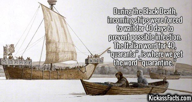 """2367 Quaranta-During the Black Death, incoming ships were forced to wait for 40 days to prevent possible infection. The Italian word for 40, """"quaranta"""", is where we get the word """"quarantine."""""""