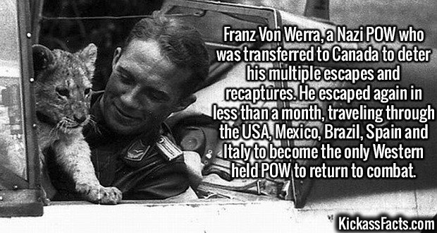 2649 Franz Von Werra-Franz Von Werra, a Nazi POW who was transferred to Canada to deter his multiple escapes and recaptures. He escaped again in less than a month, traveling through the US, Mexico, Brazil, Spain and Italy to become the only Western held POW to return to combat.