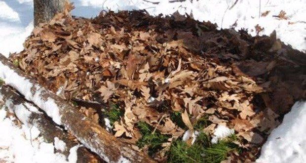 08. Leaves Bedding