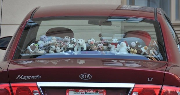 09. Stick a stuffed animal in the back window of your car.