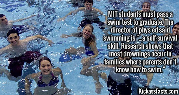 """2445 MIT swim Test-MIT students must pass a swim test to graduate. The director of phys ed said swimming is """"...a self-survival skill. Research shows that most drowning occur in families where parents don't know how to swim."""""""
