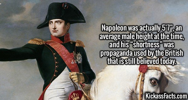 "2496 Napoleon-Napoleon was actually 5'7"", an average male height at the time, and his ""shortness"" was propaganda used by the British that is still believed today."