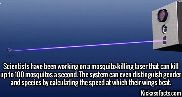 2500 Mosquito Laser-Scientists have been working on a mosquito-killing laser that can kill up to 100 mosquitos a second. The system can even distinguish gender and species by calculating the speed at which their wings beat.