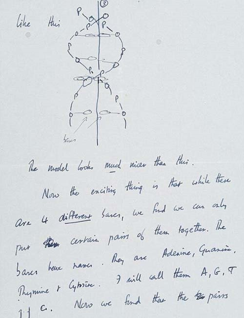 31. 1953 Letter from Francis Crick Detailing the Discovery of DNA