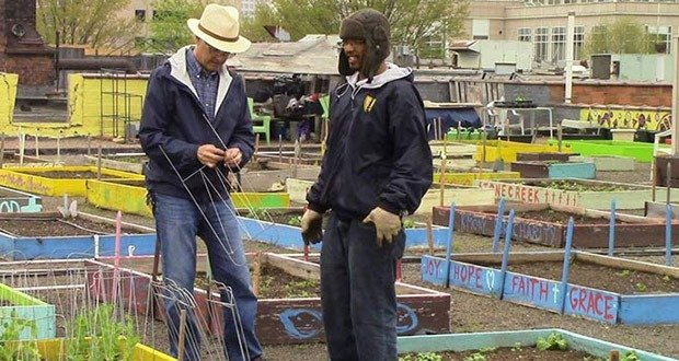 03. Homeless people planted a massive organic garden