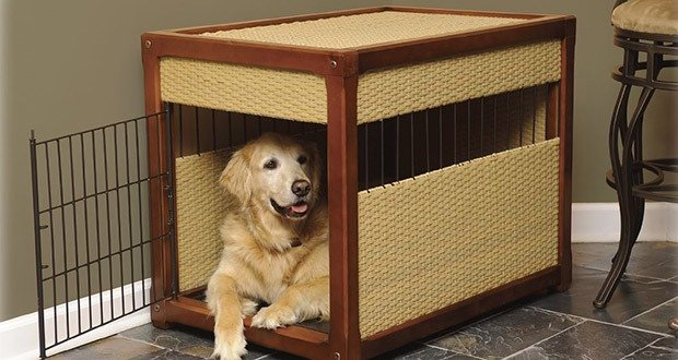 04. Don't use your dog's kennel as a punishment