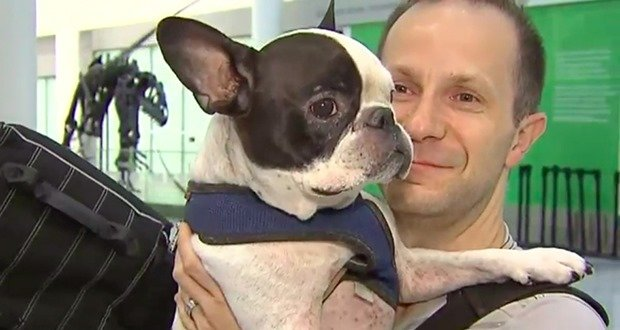 08. Pilot Diverts Flight To Save Dog From Freezing To Death
