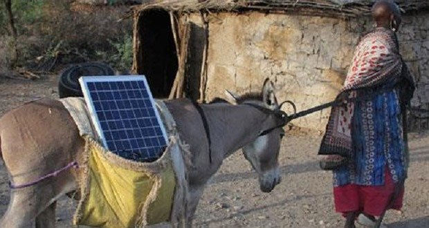10. Maasai Women & Donkeys Bring Solar Power to Those Who Need it Most