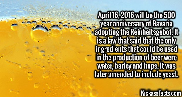 2677 Reinheitsgebot-April 16, 2016 will be the 500 year anniversary of Bavaria adopting the Reinheitsgebot. It is a law that said that the only ingredients that could be used in the production of beer were water, barley and hops. It was later amended to include yeast.