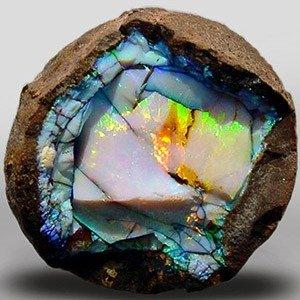 Opal 11