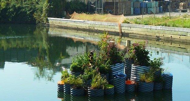 09. Floating Garden Cleans Waterways
