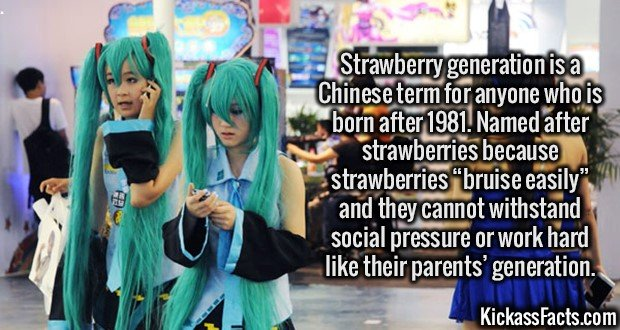 "2737 Strawberry generation-Strawberry generation is a Chinese term for anyone who is born after 1981. Named after strawberries because strawberries ""bruise easily"" and they cannot withstand social pressure or work hard like their parents' generation."