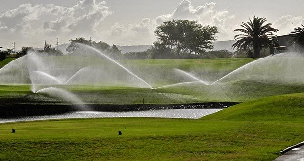 Golf course water consumption
