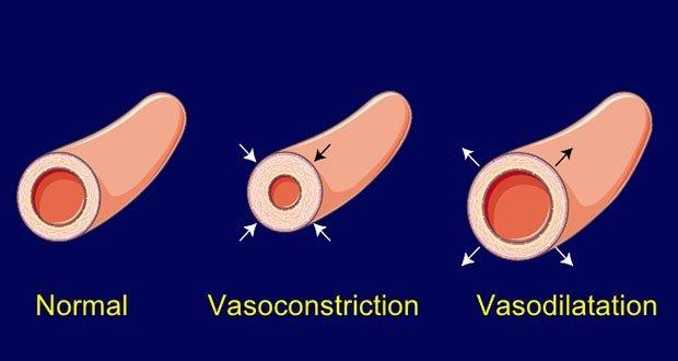 Vasodilatation