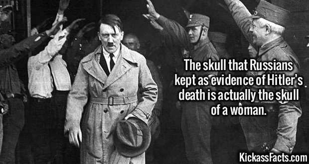 2996 Hitler Skull-The skull that Russians kept as evidence of Hitler's death is actually the skull of a woman.