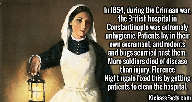 3003 Florence Nightingale-In 1854, during the Crimean war, the British hospital in Constantinople was extremely unhygienic. Patients lay in their own excrement, and rodents and bugs scurried past them. More soldiers died of disease than injury. Florence Nightingale fixed this by getting patients to clean the hospital.