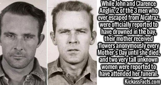 3013 John and Clarence Anglin-While John and Clarence Anglin, 2 of the 3 men who ever escaped from Alcatraz, were officially reported to have drowned in the bay, their mother received flowers anonymously every Mother's Day until she died, and two very tall unknown women were reported to have attended her funeral.