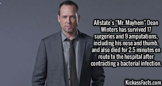 "3064 Dean Winters-Allstate's ""Mr. Mayhem"" Dean Winters has survived 17 surgeries and 9 amputations, including his nose and thumb, and also died for 2.5 minutes en route to the hospital after contracting a bacterial infection."