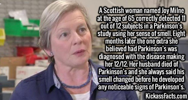 3079 Joy Milne-A Scottish woman named Joy Milne at the age of 65 correctly detected 11 out of 12 subjects in a Parkinson's study using her sense of smell. Eight months later the one extra she believed had Parkinson's was diagnosed with the disease making her 12/12. Her husband died of Parkinson's and she always said his smell changed before he developed any noticeable signs of Parkinson's.