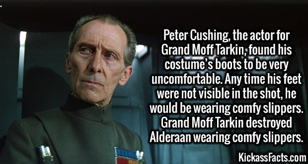 3083 Grand Moff Tarkin-Peter Cushing, the actor for Grand Moff Tarkin, found his costume's boots to be very uncomfortable. Any time his feet were not visible in the shot, he would be wearing comfy slippers. Grand Moff Tarkin destroyed Alderaan wearing comfy slippers.