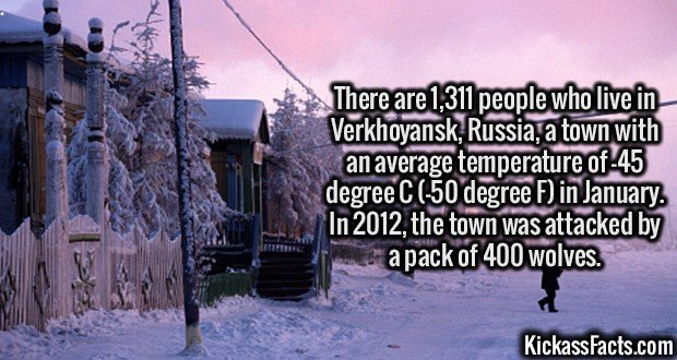 3105 Verkhoyansk-There are 1,311 people who live in Verkhoyansk, Russia, a town with an average temperature of -45 degree C (-50 degree F) in January. In 2012, the town was attacked by a pack of 400 wolves.