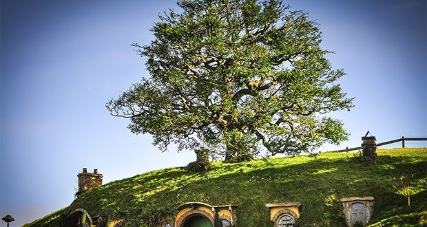 Bag End Tree