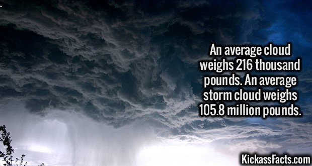 3117 Storm cloud-An average cloud weighs 216 thousand pounds. An average storm cloud weighs 105.8 million pounds.