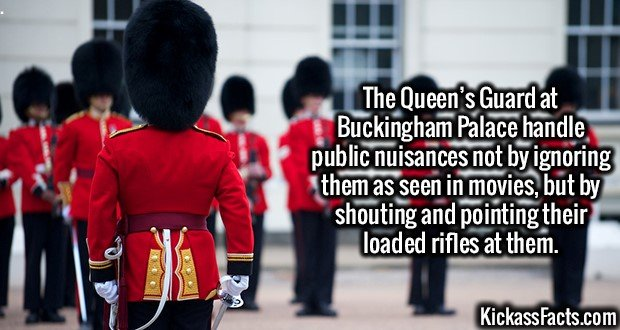 3175 Queen's Guard-The Queen's Guard at Buckingham Palace handle public nuisances not by ignoring them as seen in movies, but by shouting and pointing their loaded rifles at them.