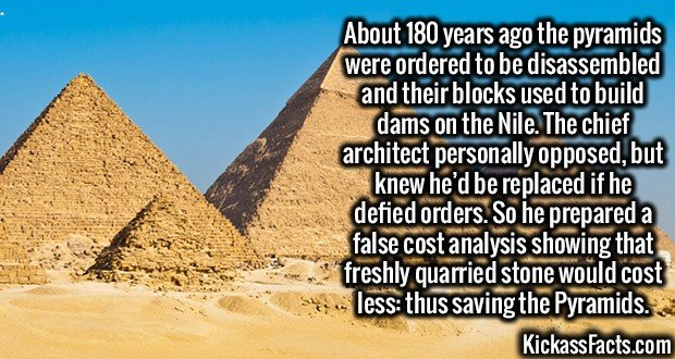3179 Pyramids-About 180 years ago the pyramids were ordered to be disassembled and their blocks used to build dams on the Nile. The chief architect personally opposed, but knew he'd be replaced if he defied orders. So he prepared a false cost analysis showing that freshly quarried stone would cost less: thus saving the Pyramids.