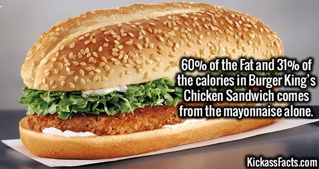 3209 BK Chicken Sandwich-60% of the Fat and 31% of the calories in Burger King's Chicken Sandwich comes from the mayonnaise alone.